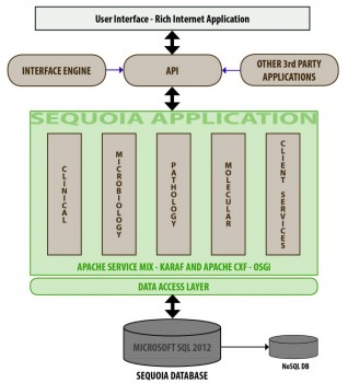 Lis enables big data mining clinical lab products sequoia architecture diagram ccuart Images