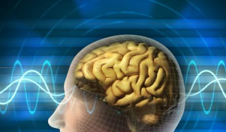 Brainwavesprofile