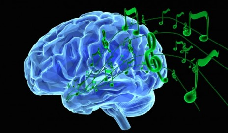 Music hobby helps brain process sound