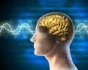 http://www.dreamstime.com/royalty-free-stock-images-brain-waves-image16995439