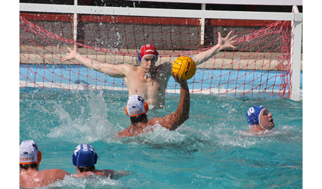http://www.dreamstime.com/stock-photography-water-polo-shot-image7539112