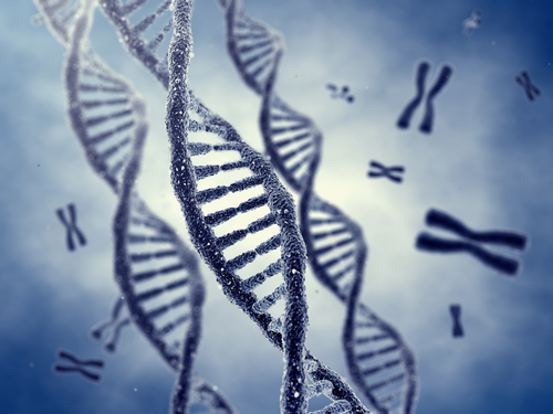 Genetic Marker Linked to Post-Concussive Neurocognitive Function ...