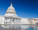 http://www.dreamstime.com/stock-images-us-capitol-washington-dc-image26550604