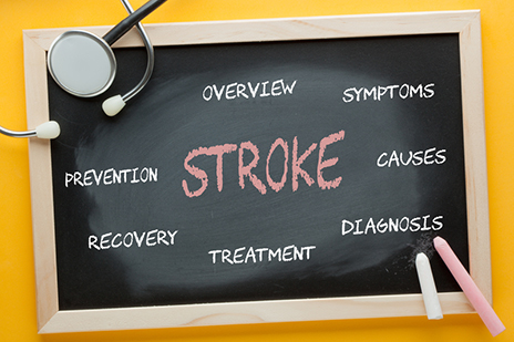 New Study Suggests Treatment >> Mice Study Suggests New Stroke Treatment Reduces Brain Damage And