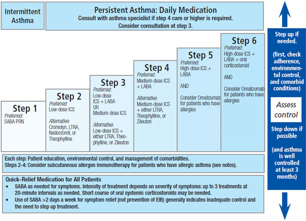 Stepwise approach to asthma management rt for decision makers