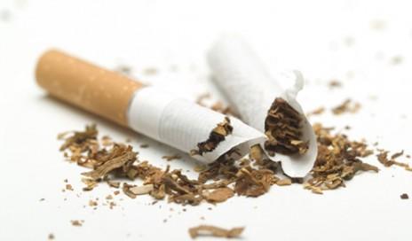 Tobacco deadlier than ever
