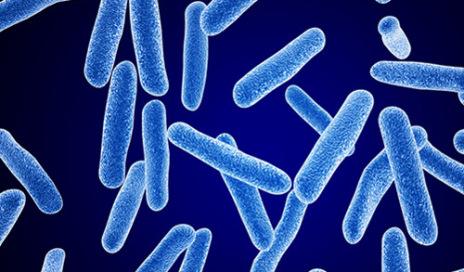 bacteria-blue-575