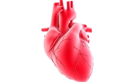 heart-3d-500