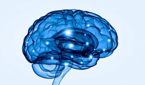 brain respiratory depression