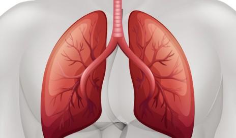 atezolizumab lung cancer drug