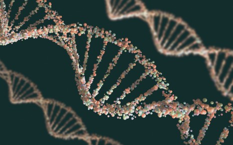 Mgh Study Suggests Genetic Link In >> Insomnia Associated Gene Regions Suggest Underlying Mechanisms