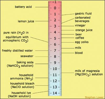 Fundamentals Of Blood Gas Analysis 24x7 Magazine